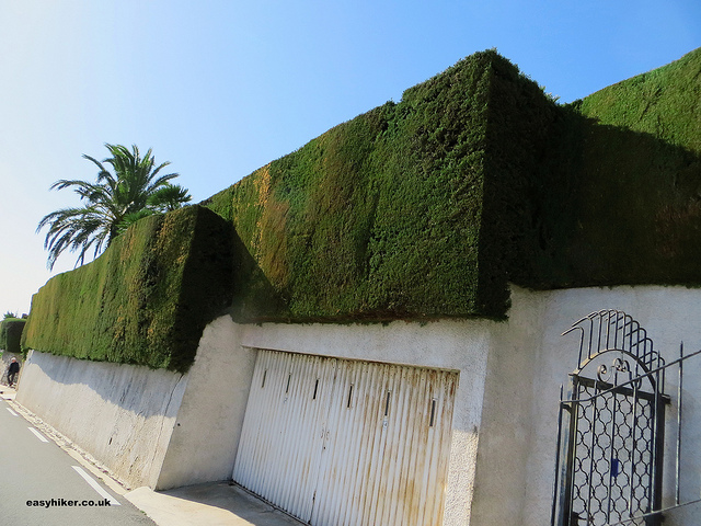 """Geomtrical hedge surround a house in Little Africa in the Riviera"""