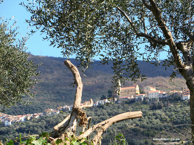 """countryside around Taggia - tale of two towns"""
