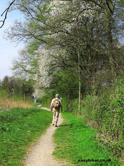 """Easy Hiker on a neanderthal hike in Germany"""