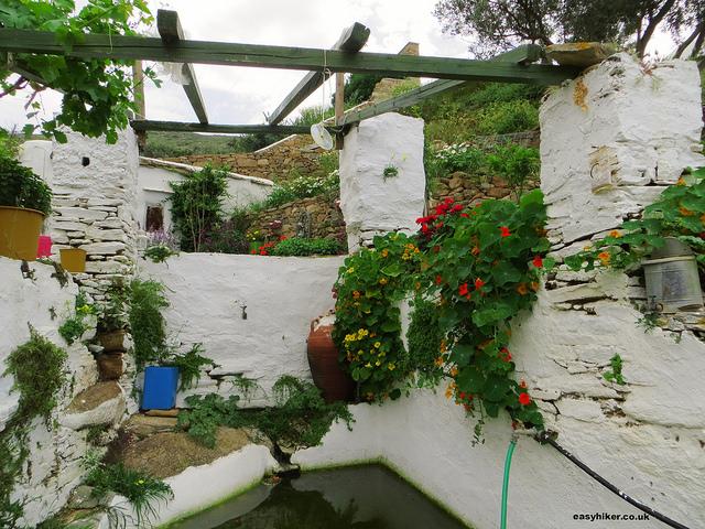 """""""Herb garden of Dimitri in Ios"""""""