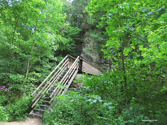 """stairway to a bridge over a river on the Wutach trail on the Black Forest"""