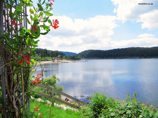"""Lake Schluch in Germany's Black Forest"""