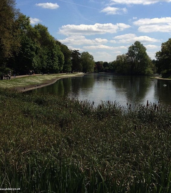 """lake in St Albans near London"""