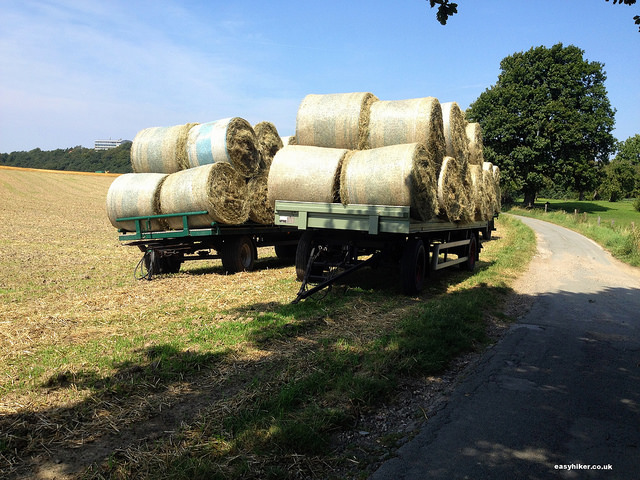 """trucks of baled hay on the perfect hiking trail"""