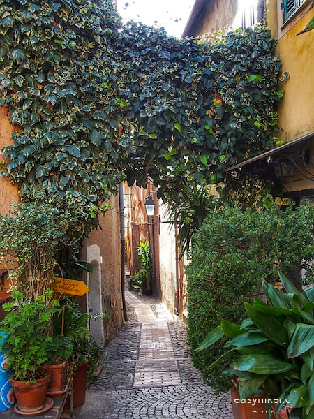 """splendid views of Cervo and its alleys"""