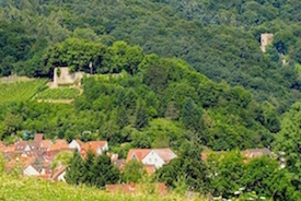 """EASY HIKES IN THE PALATINATE"""