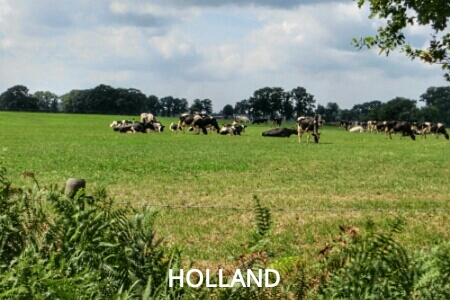 """easy hiking in Holland"""