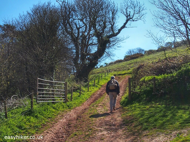 """Trail from Bantham to Thurlestone in the South Devon"""