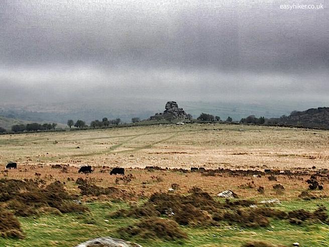 """""""Bleak landscape of the Moors in Dartmoor"""""""