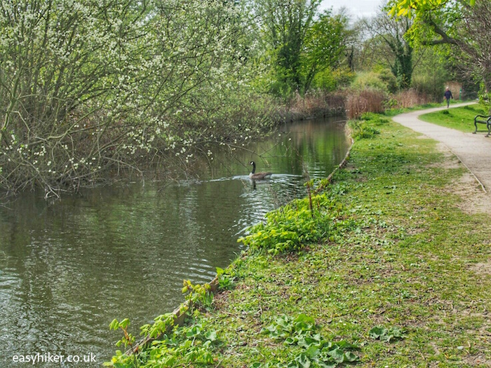 """""""Town park along the New River in Enfield London - top borough"""""""