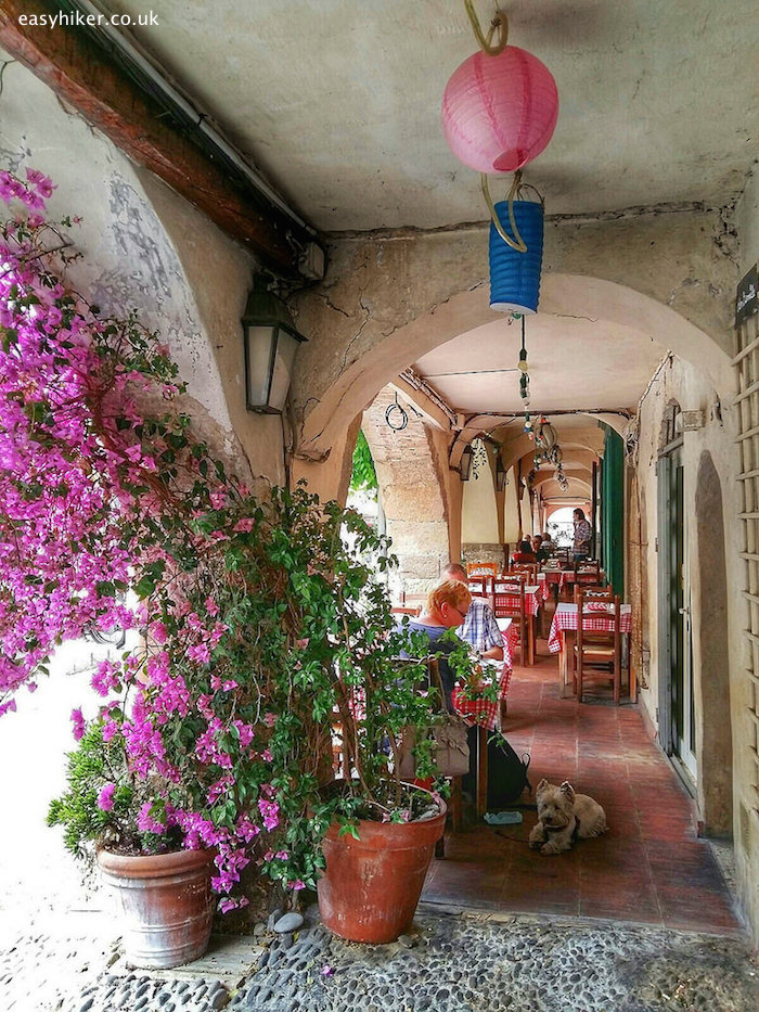 """""""natural and colourful charm of Biot"""""""