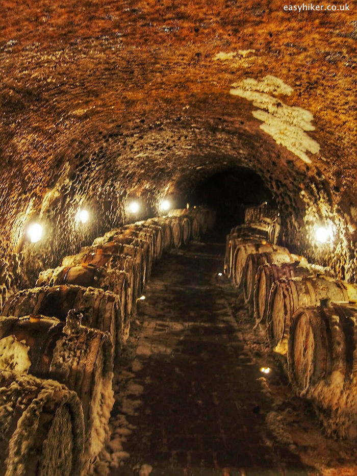 """wine cellar of the Ostrozovic vineyard in the Tokaj region of Slovakia"""