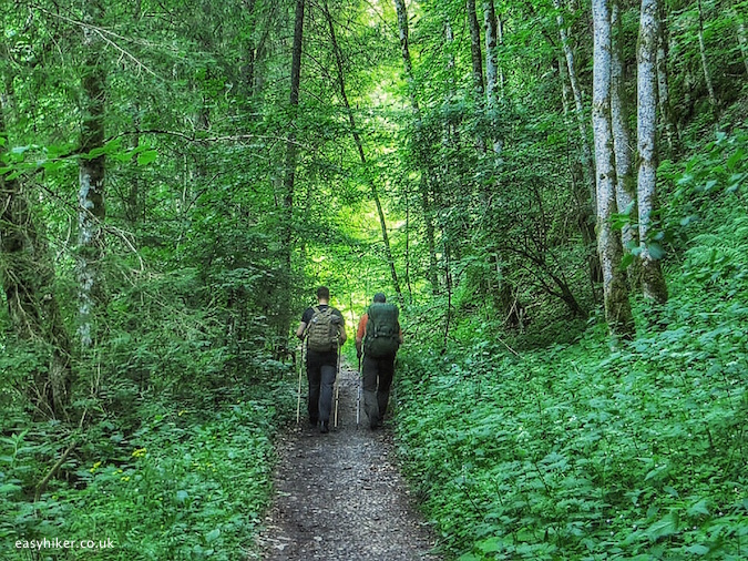"""Top easy hiker tips include hikes in the Black Forest"""