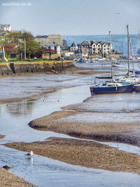 """fake estuary in Kingsbridge"""