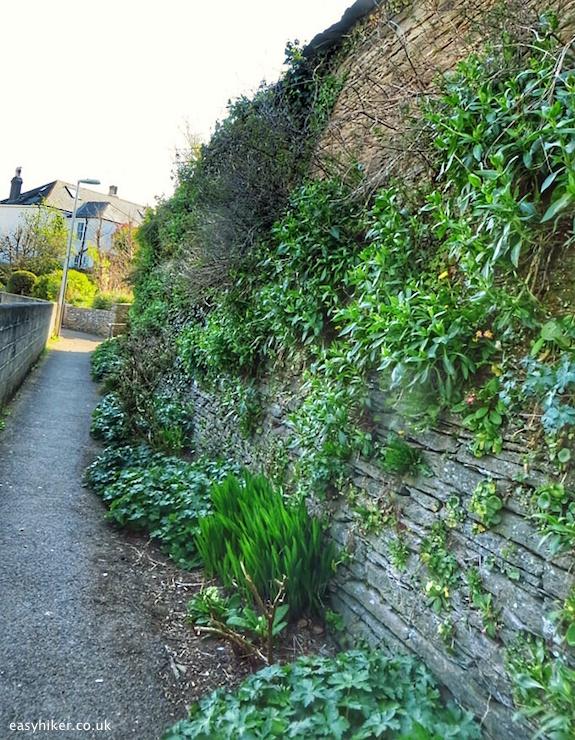 """A street in the Eastern Backway of Kingsbridge"""
