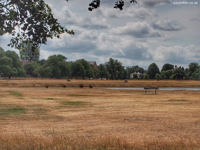 """a walk through Wimbledon Common"""