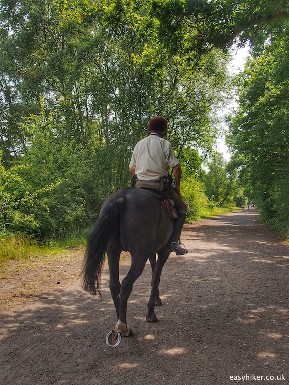 """Wimbledon Common park ranger on a horse"""
