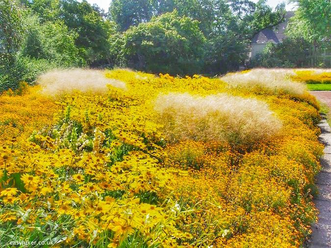 """a summer garden in full blook in Nordpark Duesseldorf"""