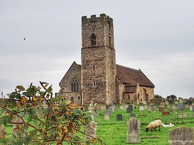 """sheep grazing on the graveyard of Lowestoft on the Suffolk Coast Path"""