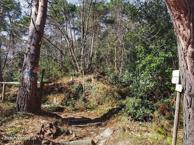 """hiking trail in San Romolo - Funiculaire of San Romolo is No More"""