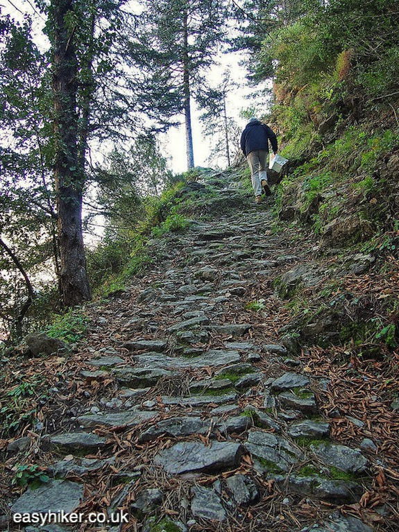 """uphill Sporty Hike on the Cruella Trail in Breil sur Roya"""