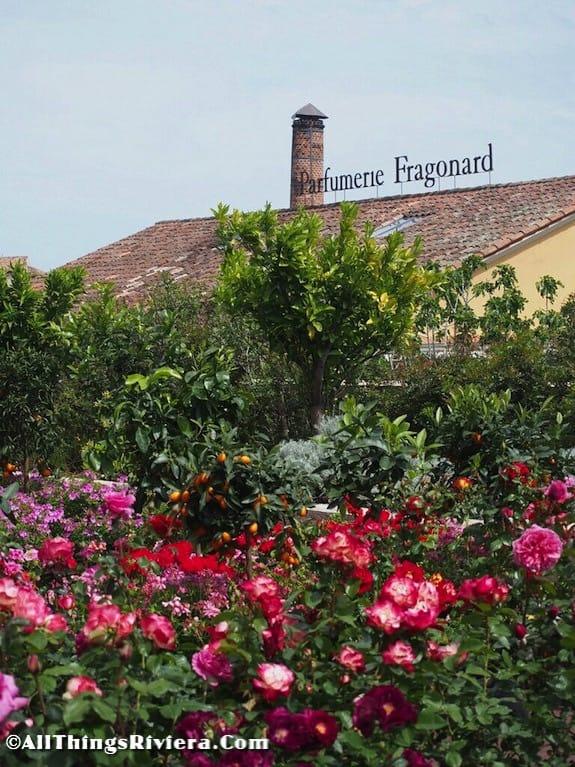 """""""Fragonard rooftop - Grasse is for inhaling"""""""