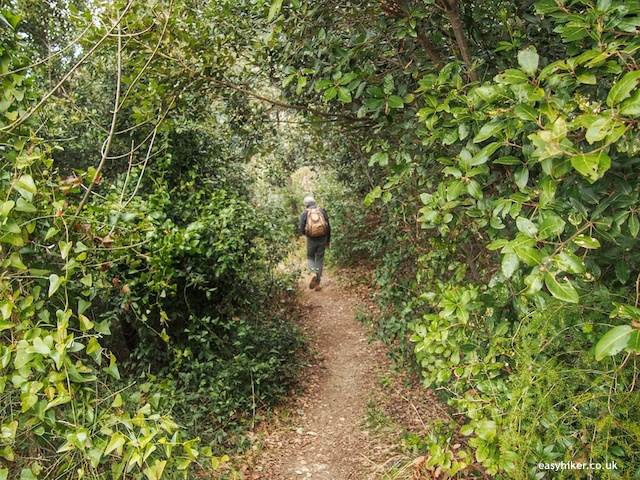 """into the forest hiking in Finale Ligure"""